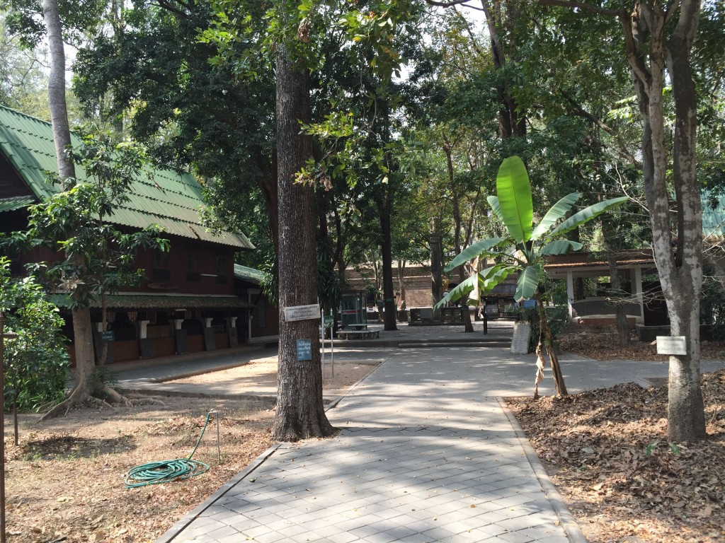 A small part of the temple grounds.  Very peaceful.