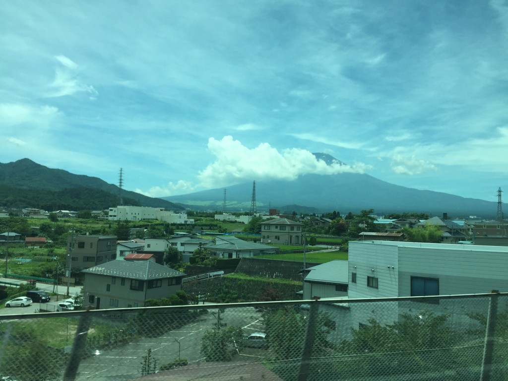 This was my very first view of Mt Fuji, and I'll admit that it was pretty exciting. That was the highlight.
