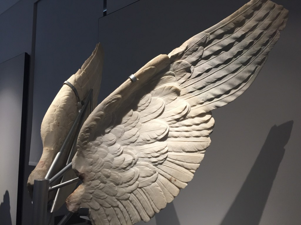 In the small museum at the top of the Palatine Hill (seen above the Temple otVV in that last photo), wings from an ancient Roman statue. These were freakin amazing, luminous in the light and so finely detail they looked like actual feathers. Really stunning.