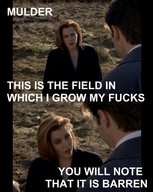Scully's Fucks