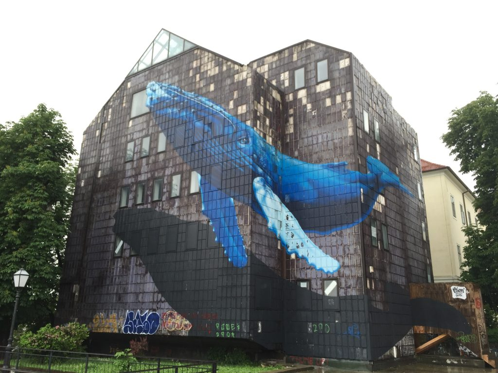 I have no idea why this building has a whale painted on it, but good choice!