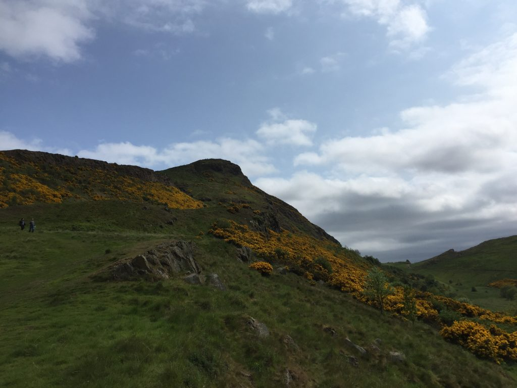 Arthur's Seat, from below. It's just so pretty!