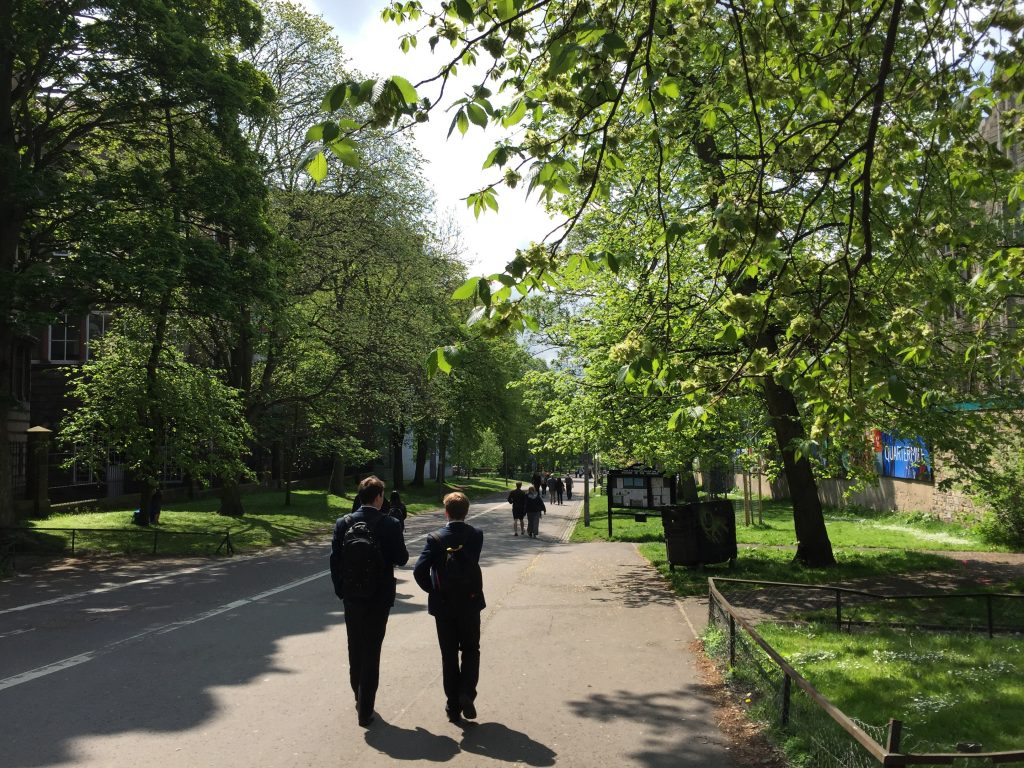 Looking for a lunch place I'd seen from the bus, I found The Meadows, a very large park south of The University of Ediburgh (south of Old Town). It had this great walkway leading to it, next to some amazing looking apartments called The Quartermile.